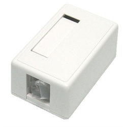 1 PORT KEYSTONE SURFACE OUTLET FOR TM314, WHITE